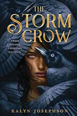 The Storm Crow jacket art